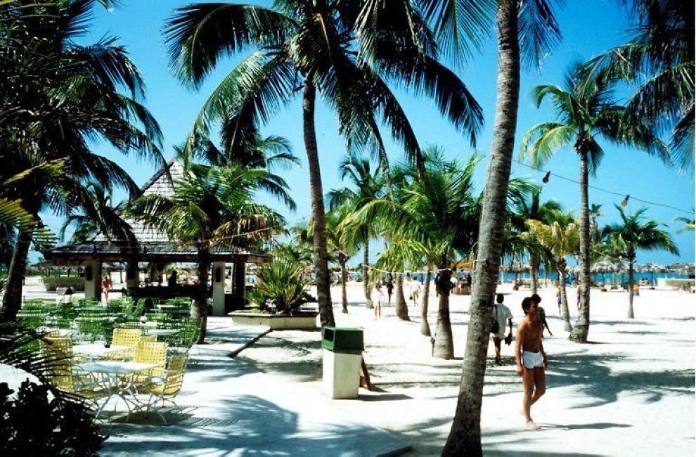 <b>SKATTEPARADIS:</b> Om man følger sporet fra SAS sine innleide fly, ender man opp i skatteparadiset Cayman Islands. Her er flyene registrert med hemmelige eiere.