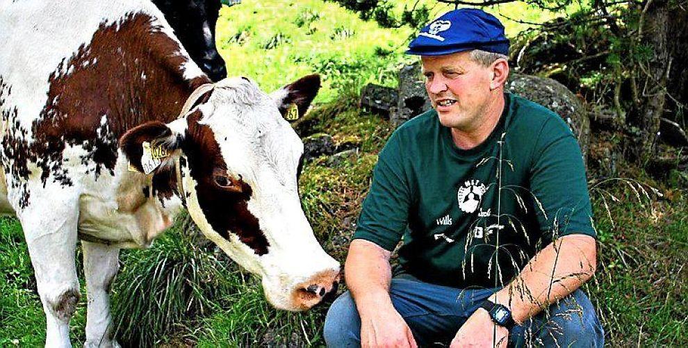 <b>BONDELAGET:</b> ¿Om Reitan får det som han ønsker, vil bøndene i utkantstrøkene måtte legge ned fordi det er for langt til nærmesteslakteri eller foredlingsbedrift. Dermed kan vi få et Norge uten bønder, sier lederen i Norges Bondelag, Nils T. Bjørke.