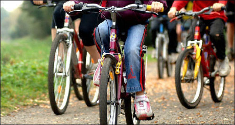 Falken sykkel