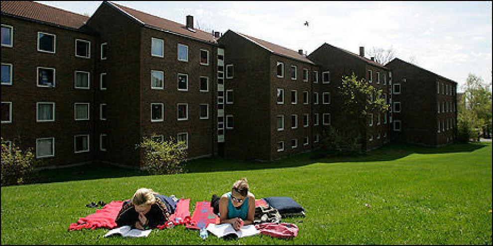 <p><b>Boligmangel</b>: Mange vil bo i studentbolig i Oslo, og Studentsamskipnaden i Oslo (SiO) har flere tusen på venteliste. Det er de ikke alene om. Her fra studentboligene på Sogn.<br/></p>