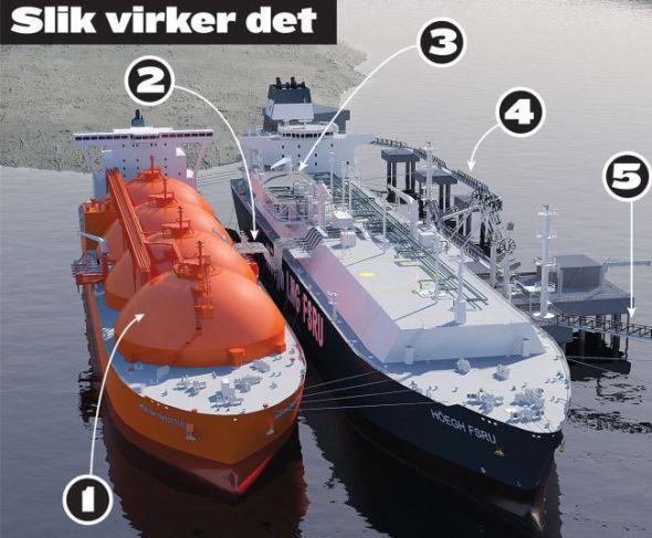 1. Flytende naturgass (LNG) blir fraktet med tankskip fra Statoils anlegg på Melkøya til Klaipeda i Litauen. 2. LNG-en pumpes fra gasstankerene og om bord i Höegh LNG-skipet «Independence» som ligger fast til kai i Klaipeda. Her lagres LNG-en i store tanker. 3. Et norskutviklet regassifiserings-anlegg på dekket av gigantskipet gjør den flytende gassen om til vanlig gass igjen. 4. Så pumpes gassen i land, inn i Litauens gassnett og videre til forbrukerne. Ved full drift kan «Independence» produsere 3-4 bcm gass årlig. Det er mer enn Litauens årlige forbruk (cirka 2,5 bcm). 5. På sikt er derfor planen at gassen fra terminalen også skal eksporteres til nabolandene. Det er også planer om at gassanlegget skal brukes til å fylle LNG på gassdrevne skip. - Hva sier Gazprom om «Independence»? - Vi har en helt normal, forretningsmessig kontakt med Gazprom. Det vi gjør, er å levere løsninger som fører til at det totale gassmarkedet vokser. Det er i alles interesse, sier Støhle.
