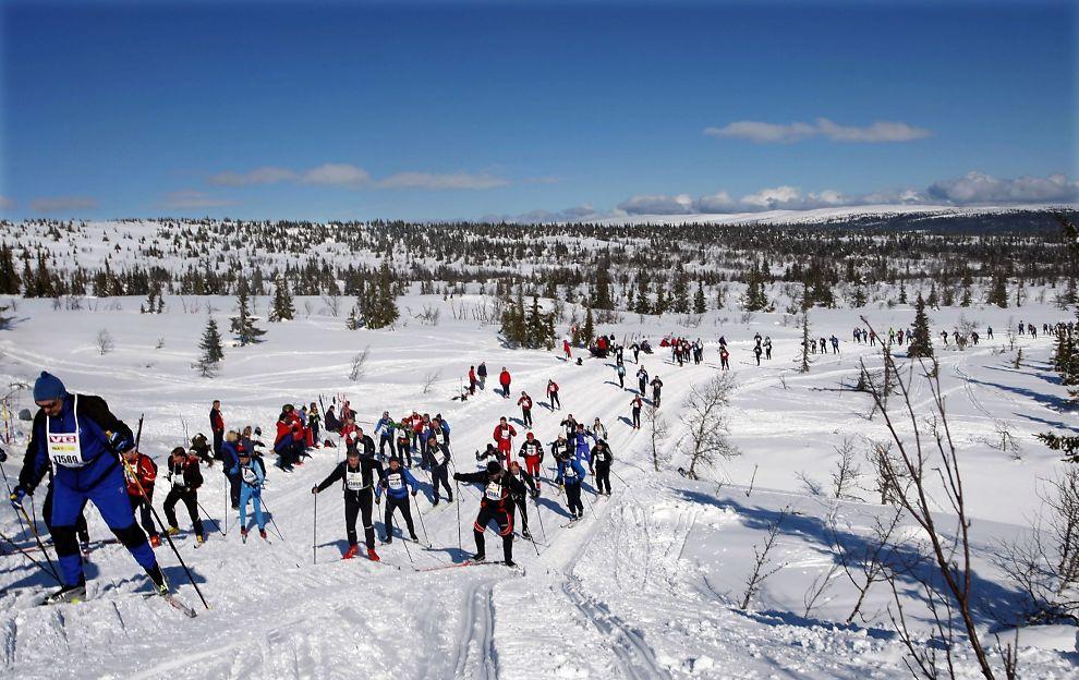 <p>SLIK SÅ DET UT: Her går deltakere opp Midtfjellet i Birkebeinerrennet på ski i 2008. Foto: Geir Olsen/Birkebeinerrennet</p>